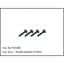 F18-006  Socket screw 2*14.5mm