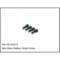 SK013  Battery Holde Screw